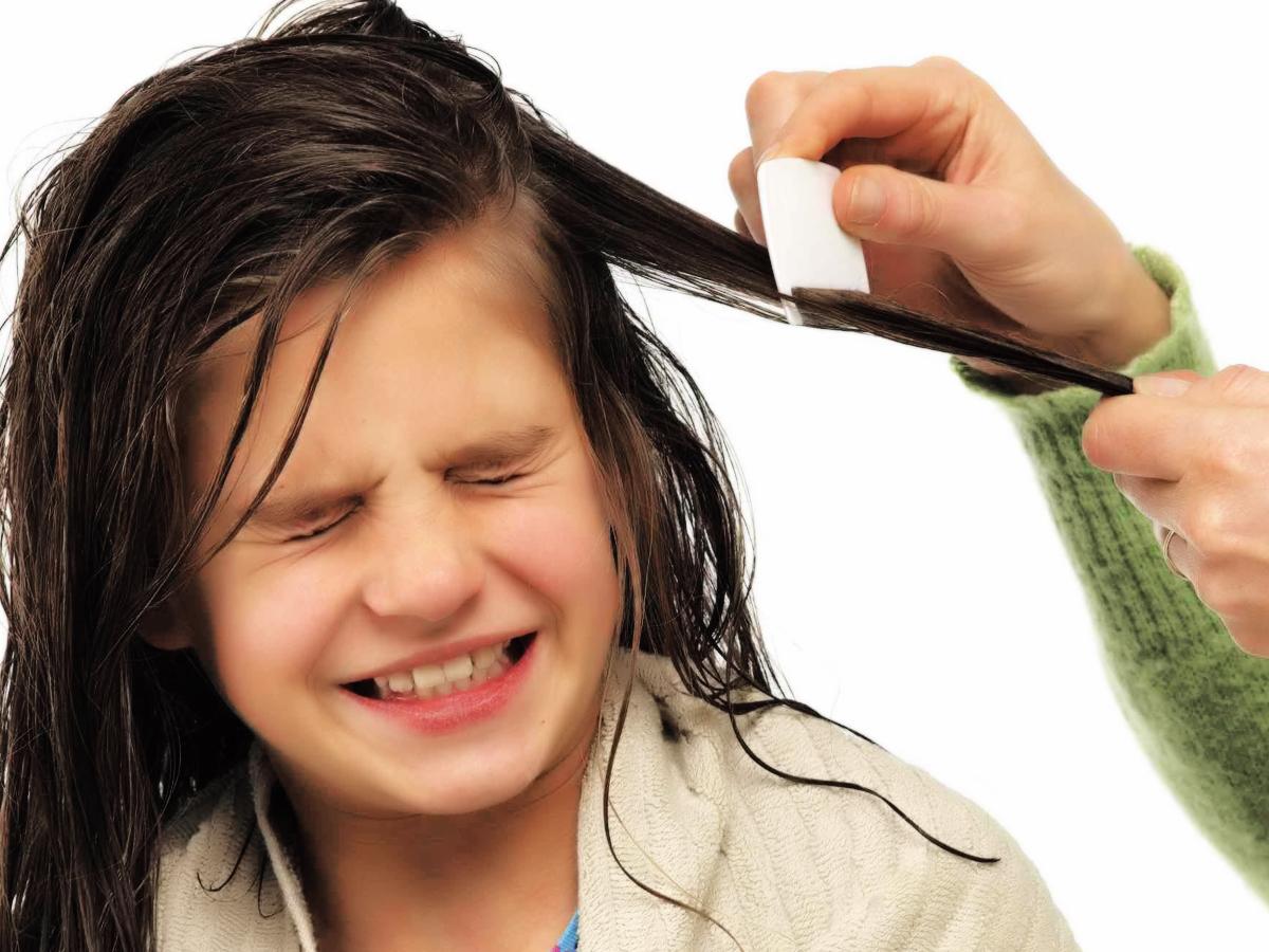 kesehatan anak - manfaat minyak kemiri untuk rambut pada anak Cara Mengoleskan Minyak Kemiri Pada Rambut